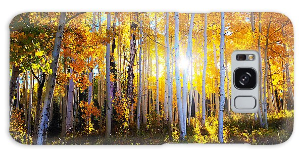 Galaxy Case featuring the photograph Colorado Autumn by Kate Avery