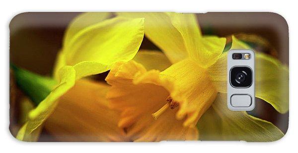 2 Daffodils Galaxy Case