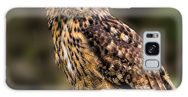 Eurasian Eagle Owl Perched On A Post Galaxy Case