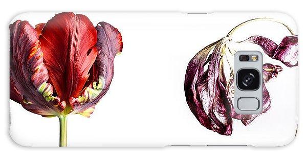 Tulips Galaxy Case - Fading Beauty by Nailia Schwarz