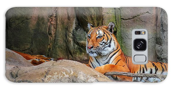 Fort Worth Zoo Tiger Galaxy Case