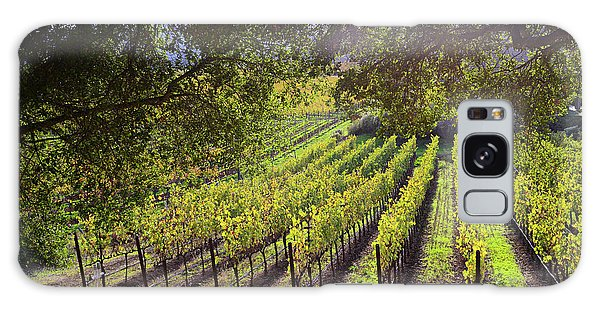Grapevines In The Fall Galaxy Case