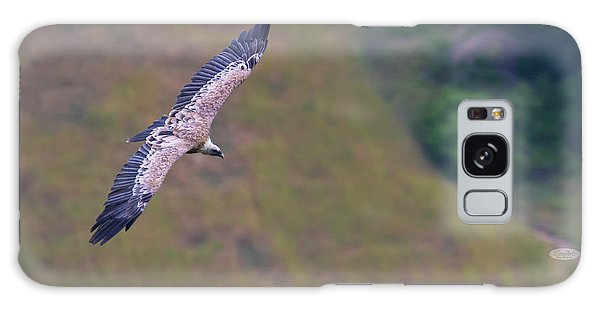 Griffon Vulture Flying, Drome Provencale, France Galaxy Case
