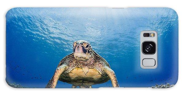 Hawaiian Turtle Galaxy Case