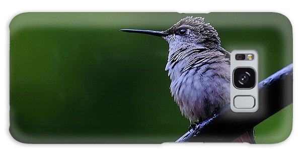 Hummingbird Portrait Galaxy Case by Ronda Ryan