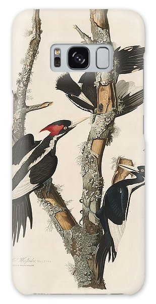 Ivory-billed Woodpecker Galaxy Case by Dreyer Wildlife Print Collections