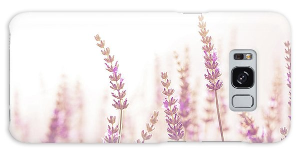 Lavender Flower In The Garden,park,backyard,meadow Blossom In Th Galaxy Case