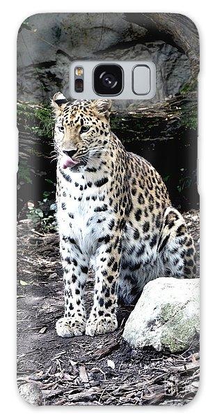 Leopard Galaxy Case by Janice Spivey
