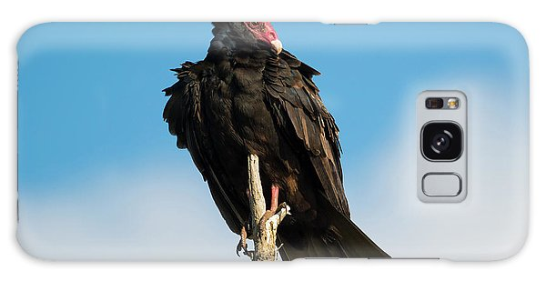 Buzzard Galaxy Case - Looking For A Meal by Mike Dawson