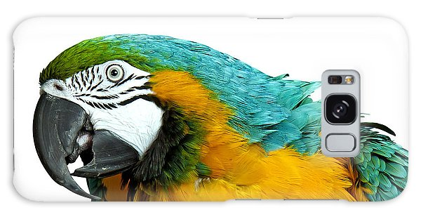 Macaw Bird Galaxy Case by Gunnar Orn Arnason
