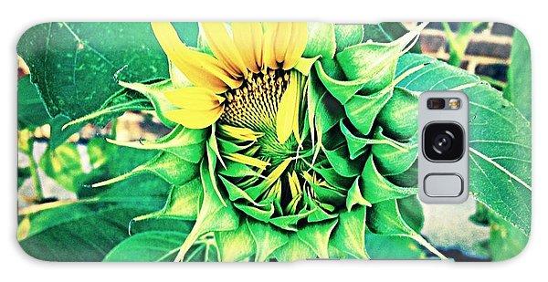 Peeping Sunflower Galaxy Case