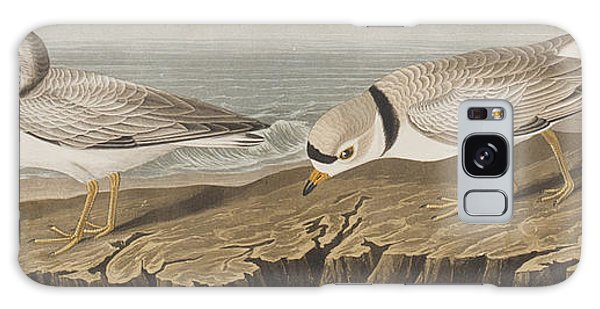Bay Galaxy Case - Piping Plover by John James Audubon