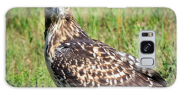 Red-tail Portrait Galaxy Case