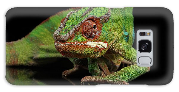 Sneaking Panther Chameleon, Reptile With Colorful Body On Black Mirror, Isolated Background Galaxy Case by Sergey Taran