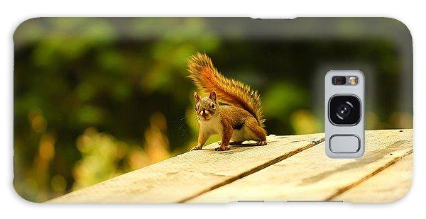 Squirrel Galaxy Case - Squirrel by Alice Kent