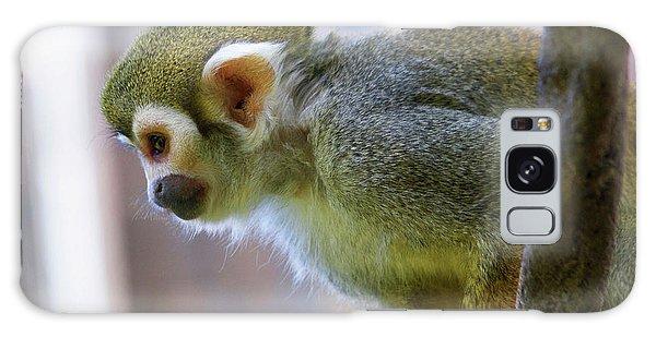 Squirrel Monkey Galaxy Case