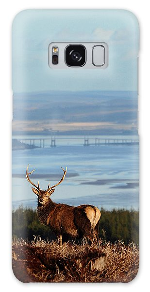 Stag Overlooking The Beauly Firth And Inverness Galaxy Case