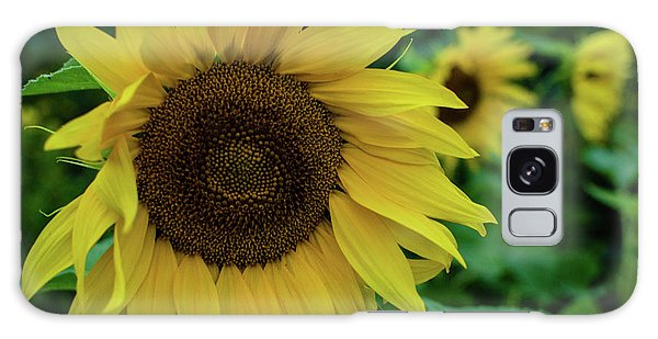 Sunflower Fields Galaxy Case
