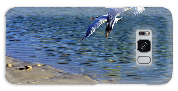 2 Terns In Flight Galaxy Case