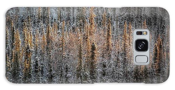 Denali Galaxy Case - Touch Of Winter by Robert Fawcett