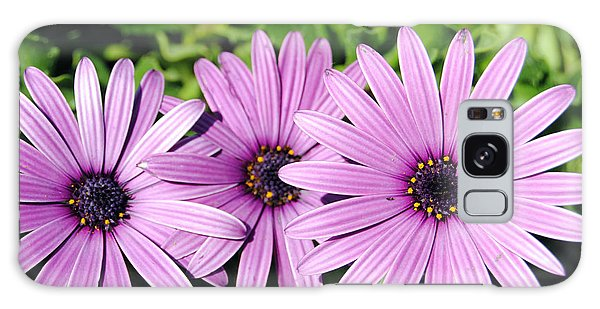 The African Daisy 2 Galaxy Case