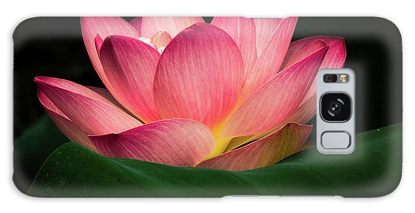Water Lily Galaxy Case by Jay Stockhaus