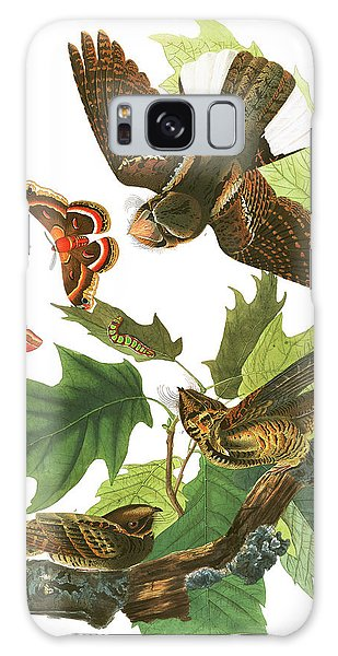 Whip Galaxy Case - Whip-poor-will by John James Audubon