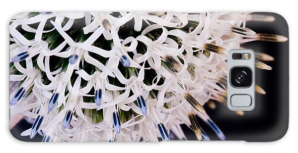 White Alium Onion Flower Galaxy Case by Colin Rayner