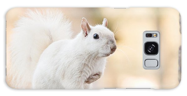 White Squirrel Galaxy Case