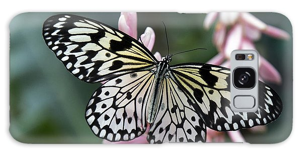 White Tree Nymph Butterfly Galaxy Case