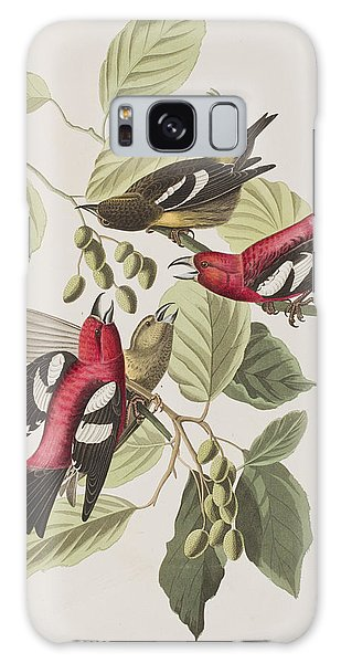 White-winged Crossbill Galaxy Case