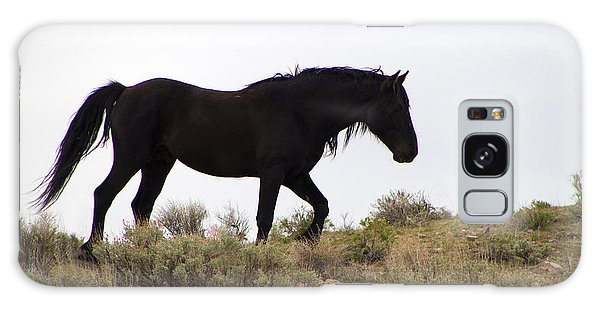 Wild Black Mustang Stallion Galaxy Case