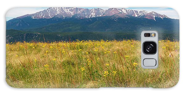 Wildflowers And Pikes Peak Galaxy Case