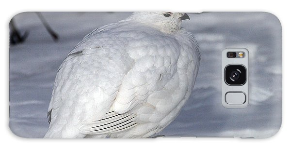 Willow Ptarmigan Galaxy Case