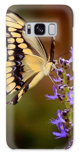 Yellow Swallowtail Galaxy Case