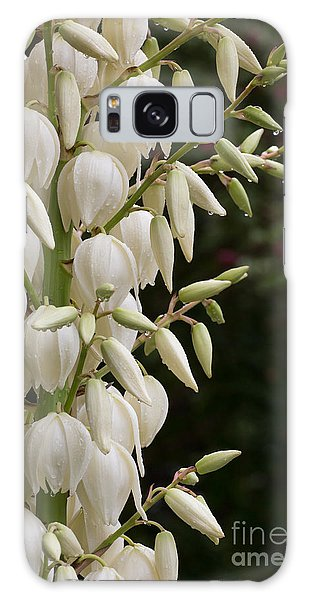 Yucca Plant In Bloom Galaxy Case