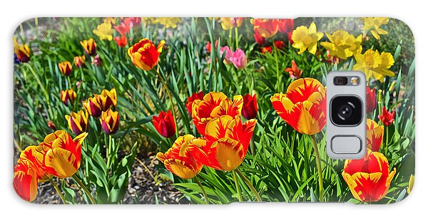 2015 Acewood Tulips 1 Galaxy Case