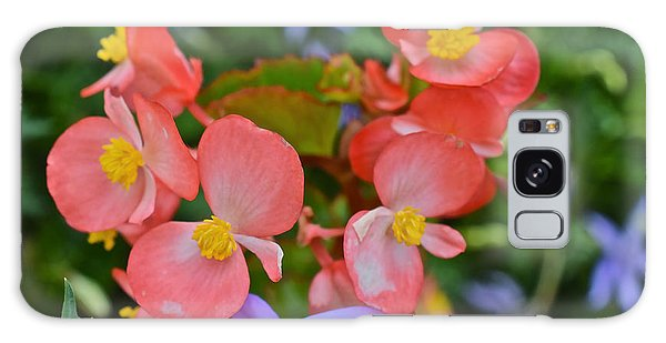 2015 Mid September At The Garden Begonias 2 Galaxy Case