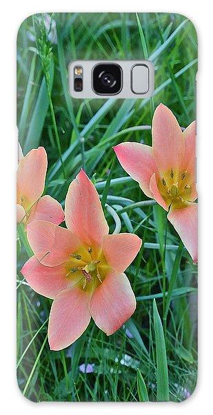2015 Spring At The Gardens Meadow Garden Tulips 3 Galaxy Case