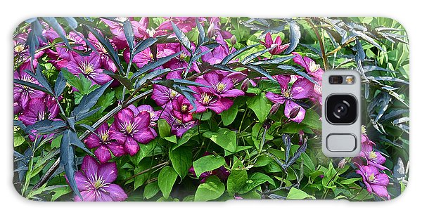2015 Summer At The Garden Beautiful Clematis Galaxy Case