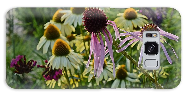 2015 Summer At The Garden Coneflowers Galaxy Case