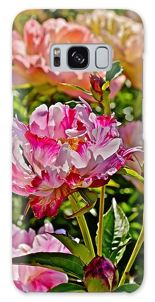 2015 Summer's Eve At The Garden Candy Stripe Peony Galaxy Case