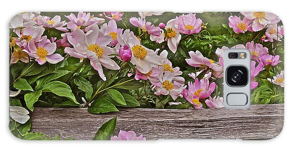 2015 Summer's Eve Front Yard Peonies 1 Galaxy Case