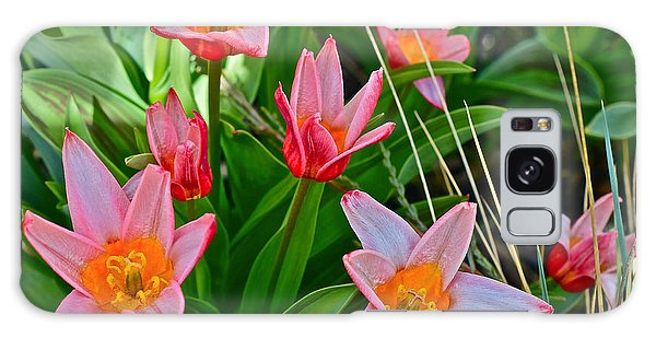 2016 Acewood Tulips 2 Galaxy Case