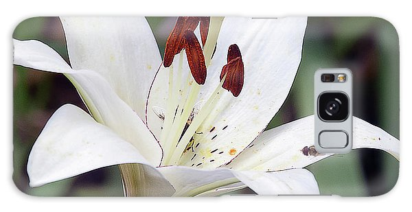 White Lily Galaxy Case by Elvira Ladocki