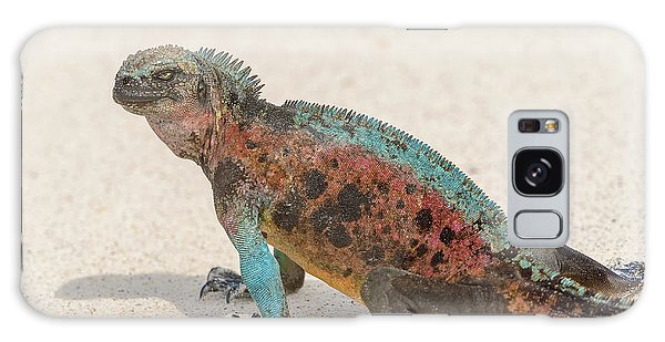 Marine Iguana On Galapagos Islands Galaxy Case