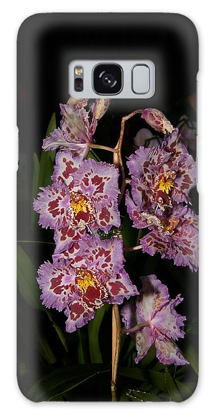 Cattleya Style Orchids Galaxy Case