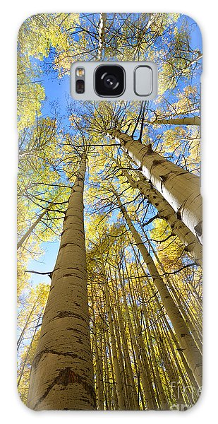 Galaxy Case featuring the photograph Aspens In The Fall by Kate Avery