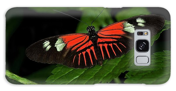 Doris Longwing Butterfly Galaxy Case