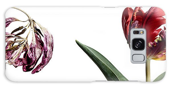 Tulip Galaxy S8 Case - Fading Beauty by Nailia Schwarz